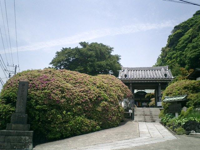 01)鎌倉市大町「安養院」.JPG