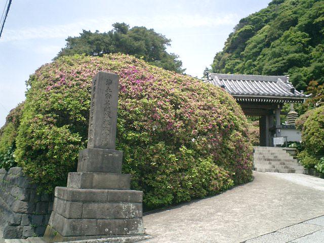 02)鎌倉市大町「安養院」.JPG