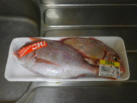 01-1) 銚子産 ' 花鯛 ' (血鯛)。.JPG